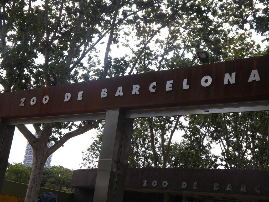 chic&basic Zoo Hotel