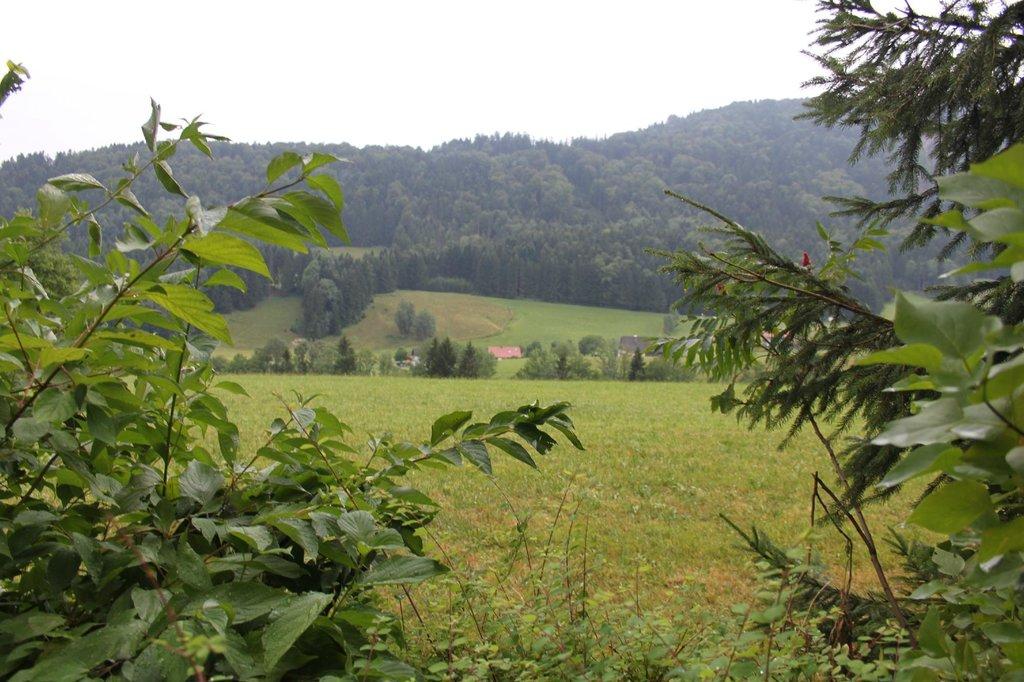 Landgasthof Seminarhotel Prielbauer