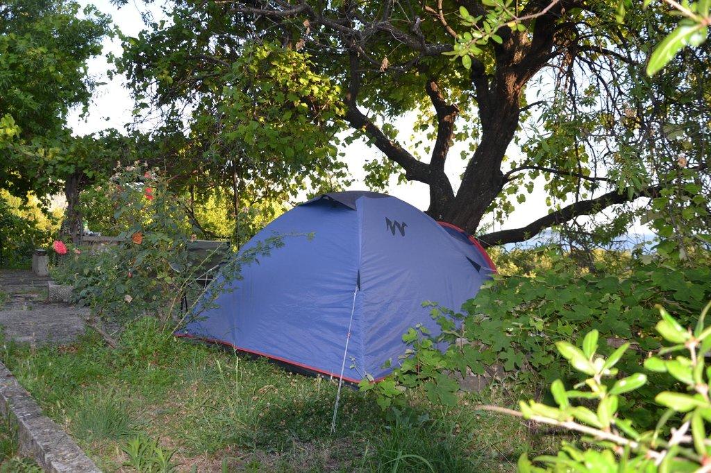 Camping Kate