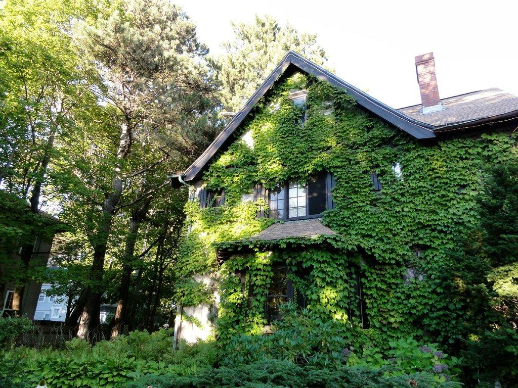 Ivy Manor Inn