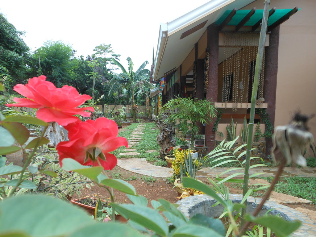 Jungle Flower Guest House