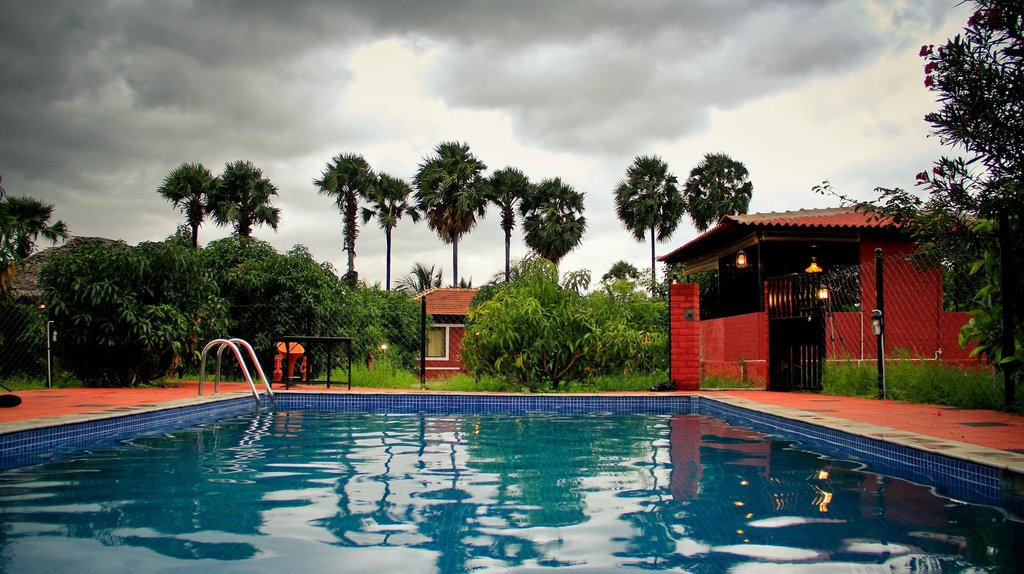 The Dense - A resort