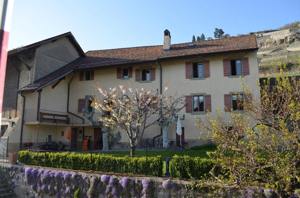 Domaine du Burignon
