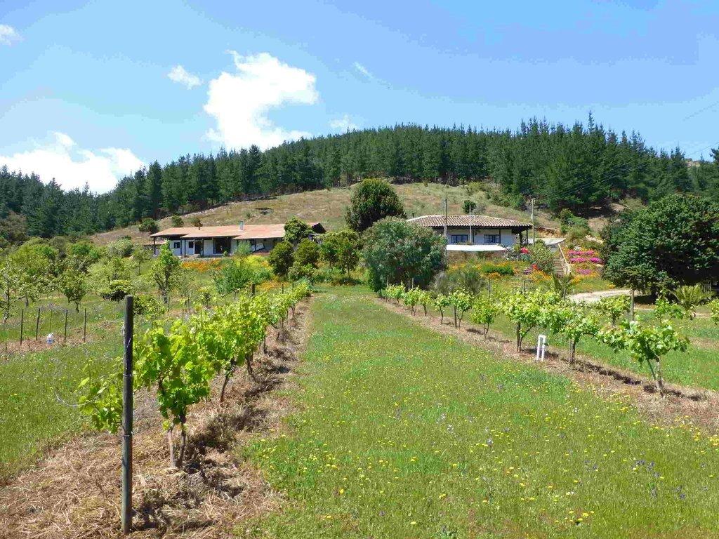 Hacienda Laguna Torca