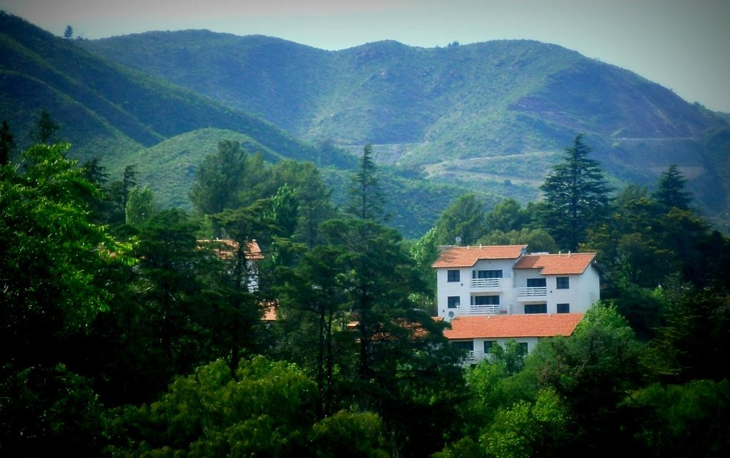 Las Ardillas Cabanas & Suites