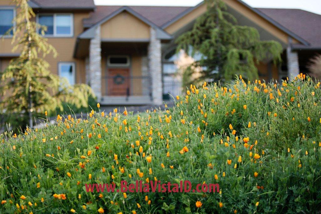 Bella Vista Idaho