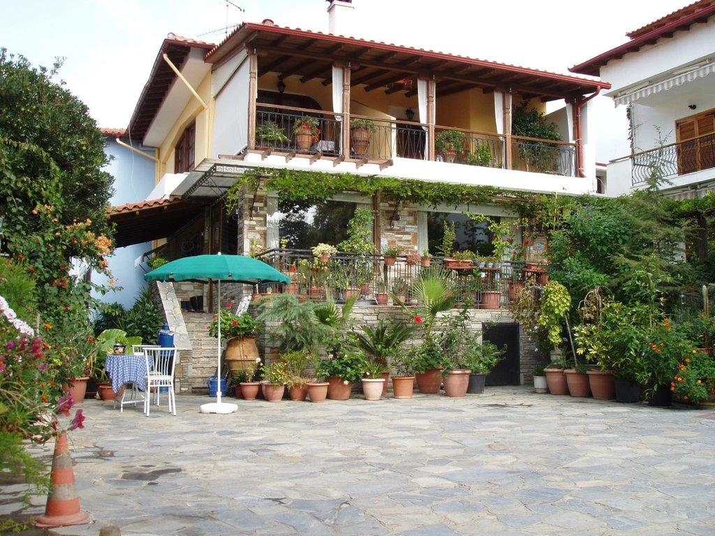Star Paradise Hotel