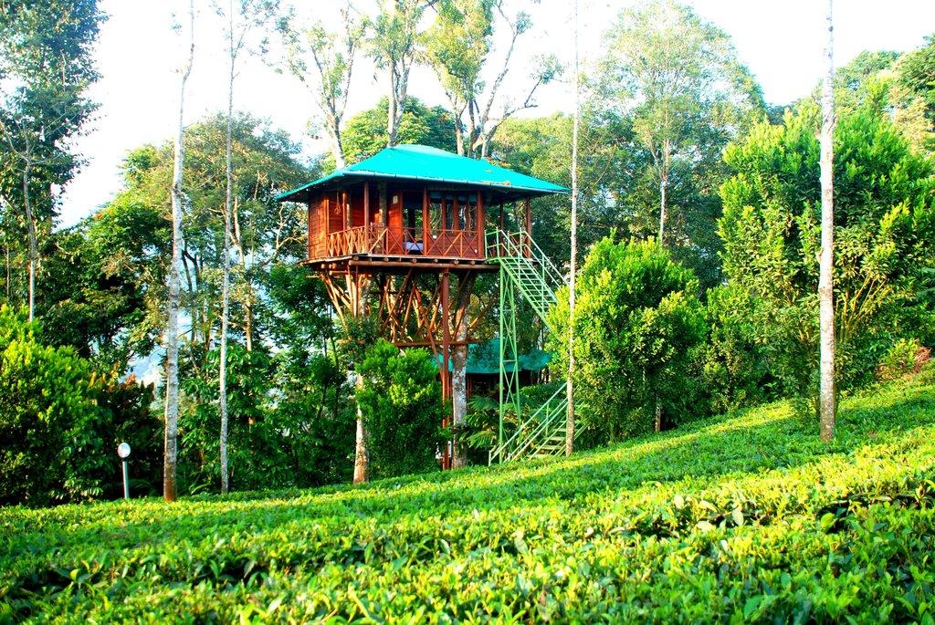 Dream Catcher Plantation Resort