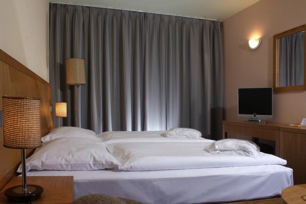 ウェルネス ホテル フリンブルク