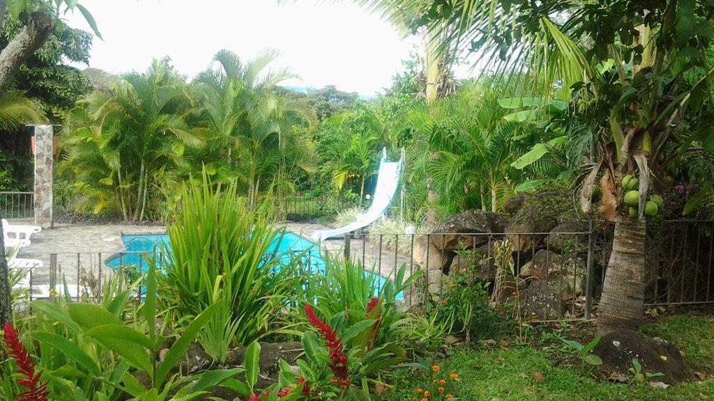 Tropical Bed & Breakfast