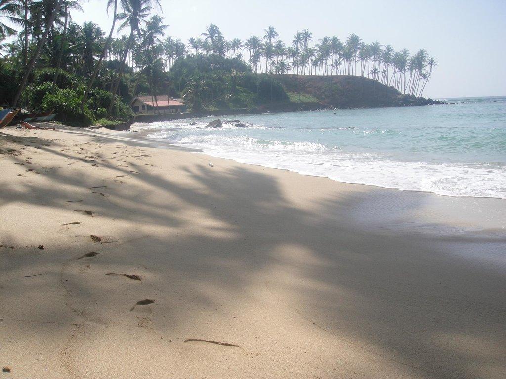Sunray Resort Mirissa
