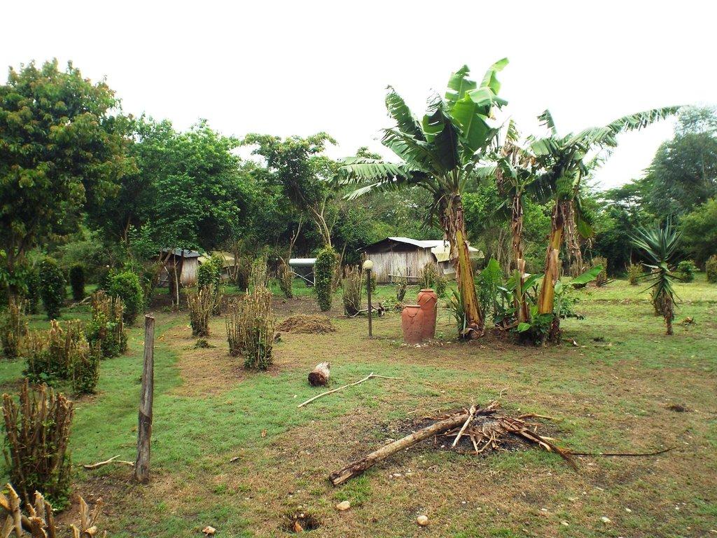 Ishasha-Ntungwe River Camp