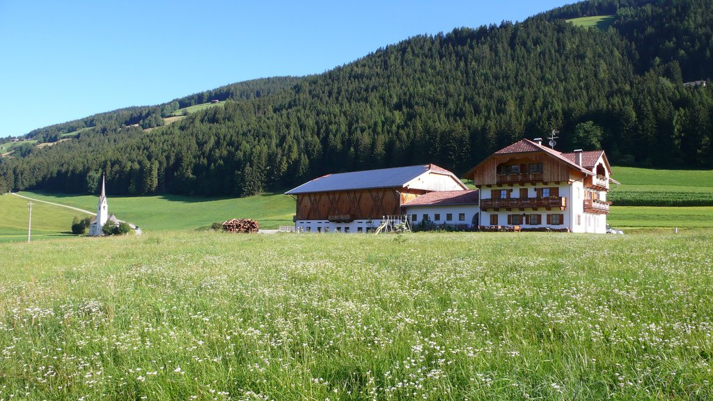Agriturismo Stauderhof