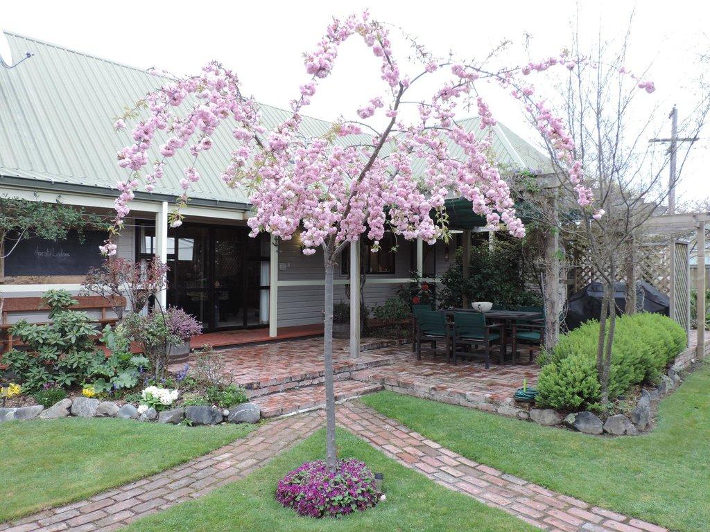 Aoraki Lodge