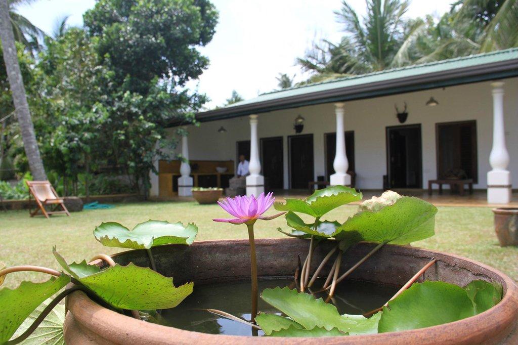 Mahawewa Nature Resort
