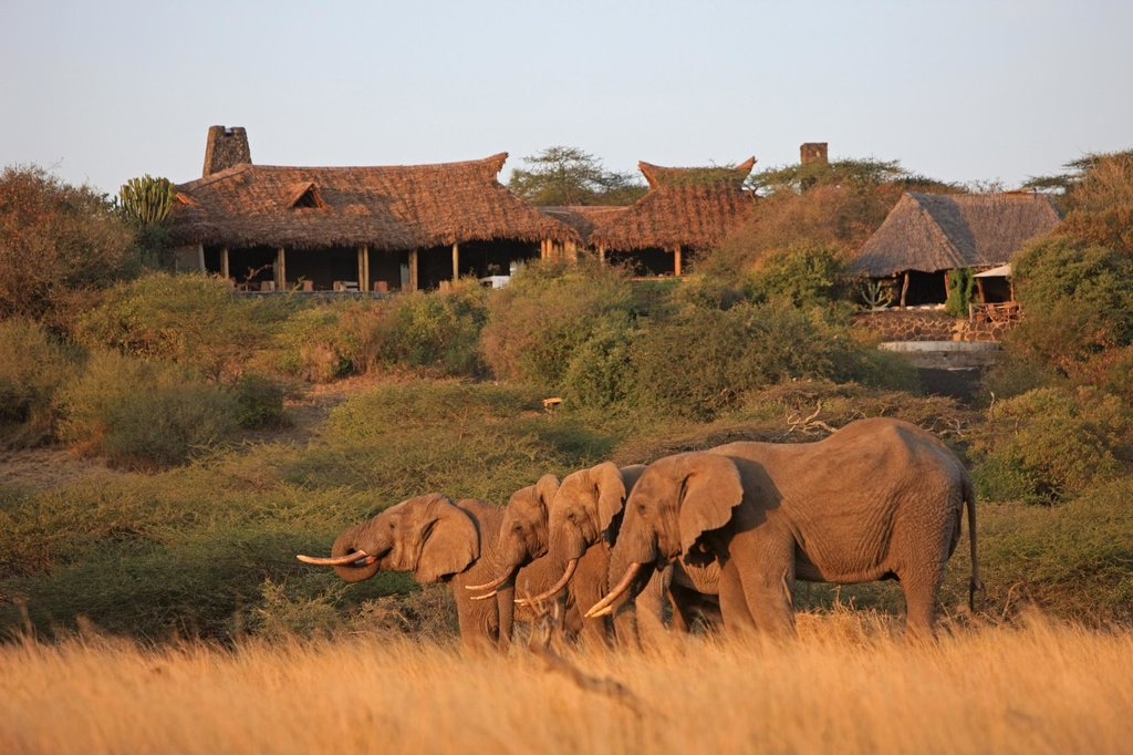 Great Plains Conservation ol Donyo Lodge