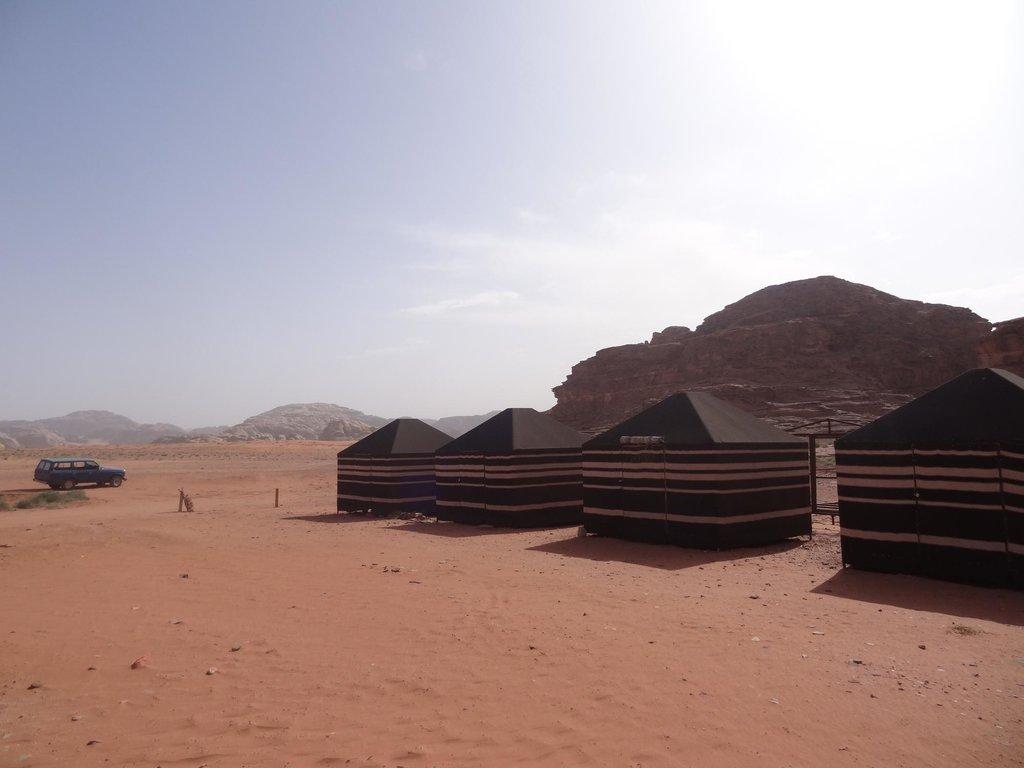 Wadi Rum Nature Tours