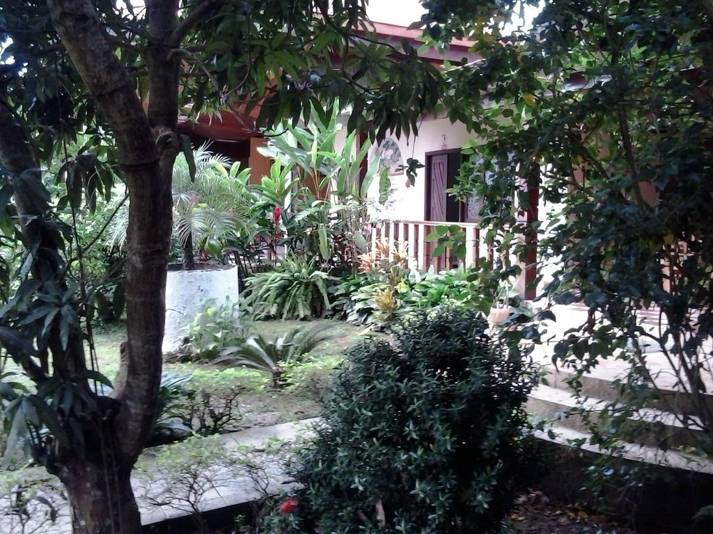 Real Amazonas Hotel