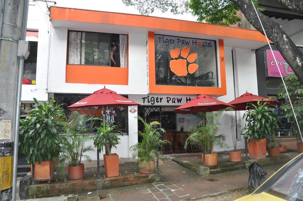 Tiger Hostal