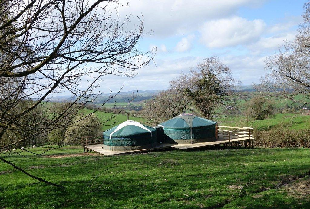 Strawberry Skys Yurts
