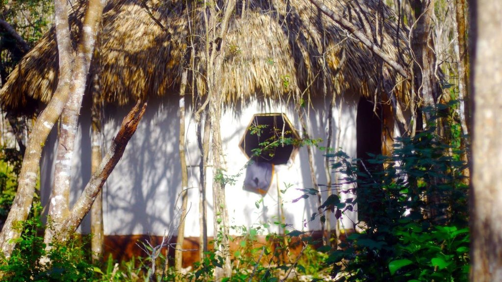 Lemurian Embassy Eco Lodge Retreat