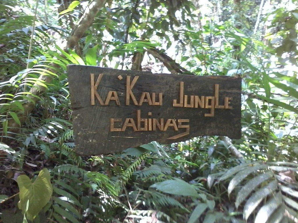 Ka'Kau Jungle Cabinas