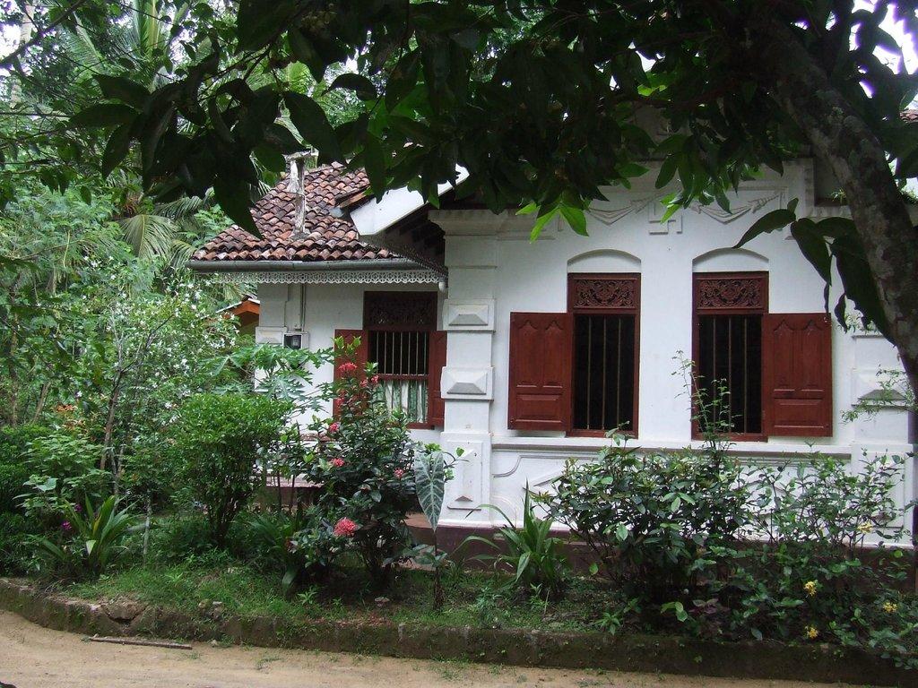 Eco Villa - Sinharaja