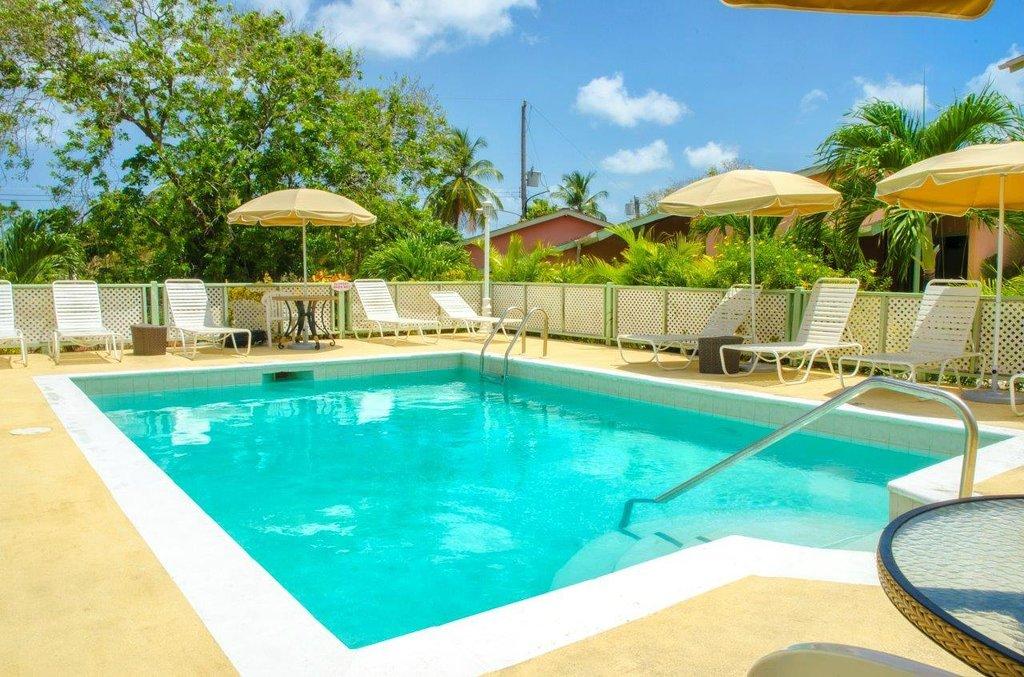 棕櫚翠鳥飯店