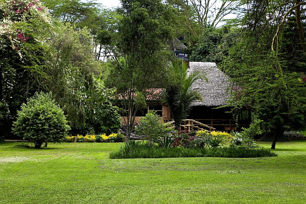 Wileli House