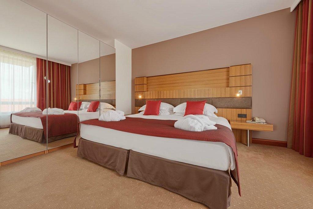 克拉科夫拉迪森 SAS 酒店