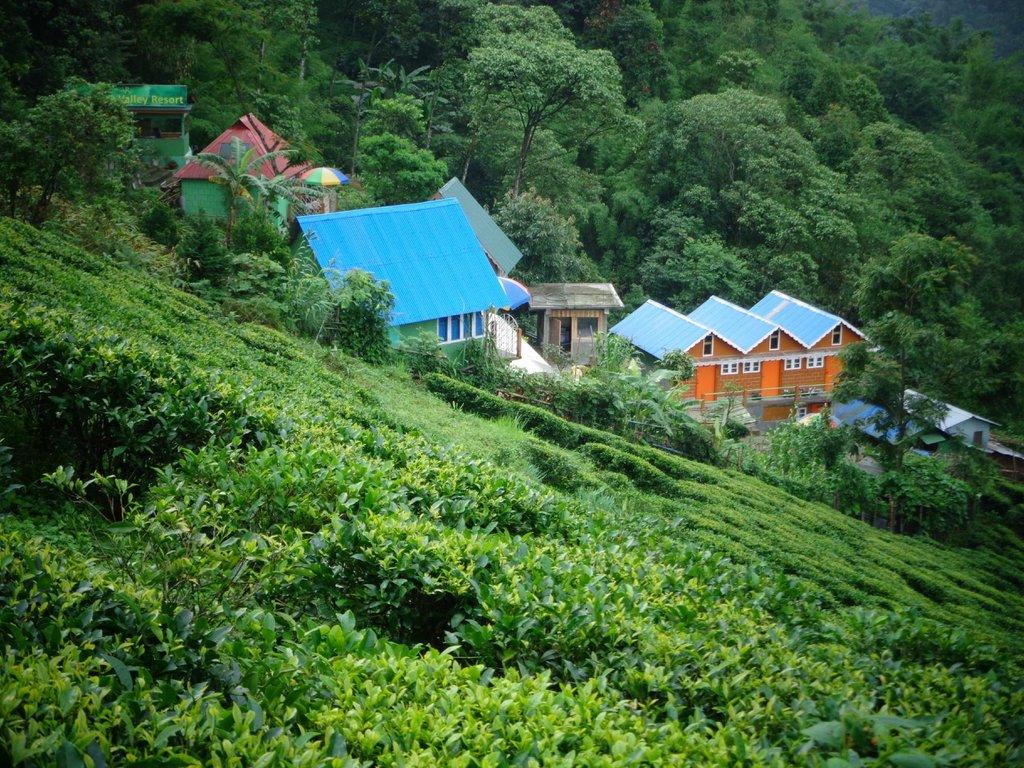 Rainbow Valley Resort