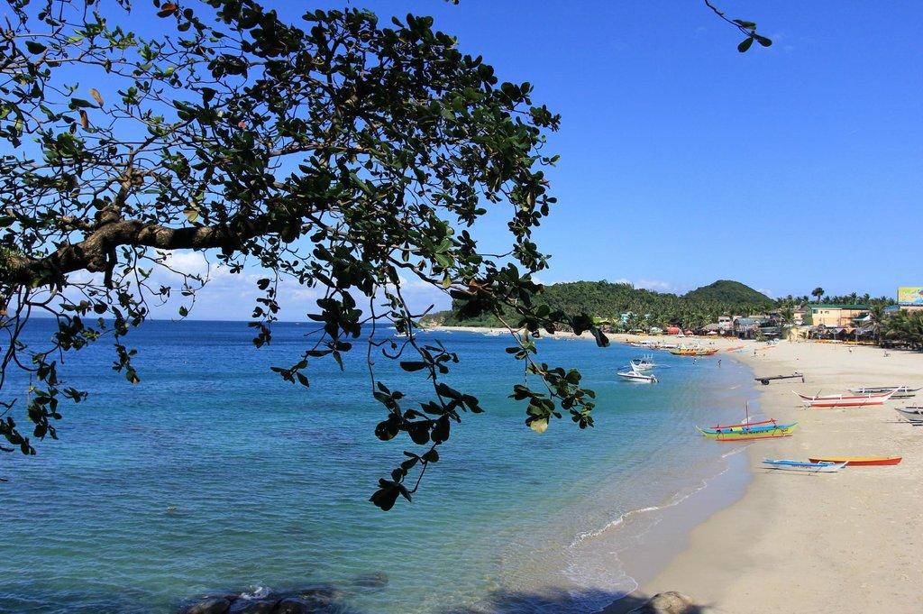 Basilico's Beach Lodge