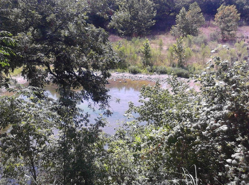 Guadalupe River RV Park & Campgrounds
