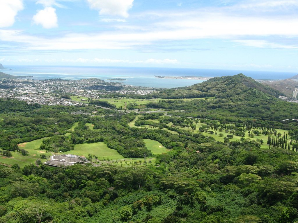 Image result for nuuanu valley lookout