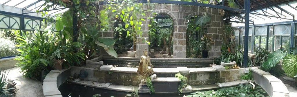 ラ ガリーナ フェリース