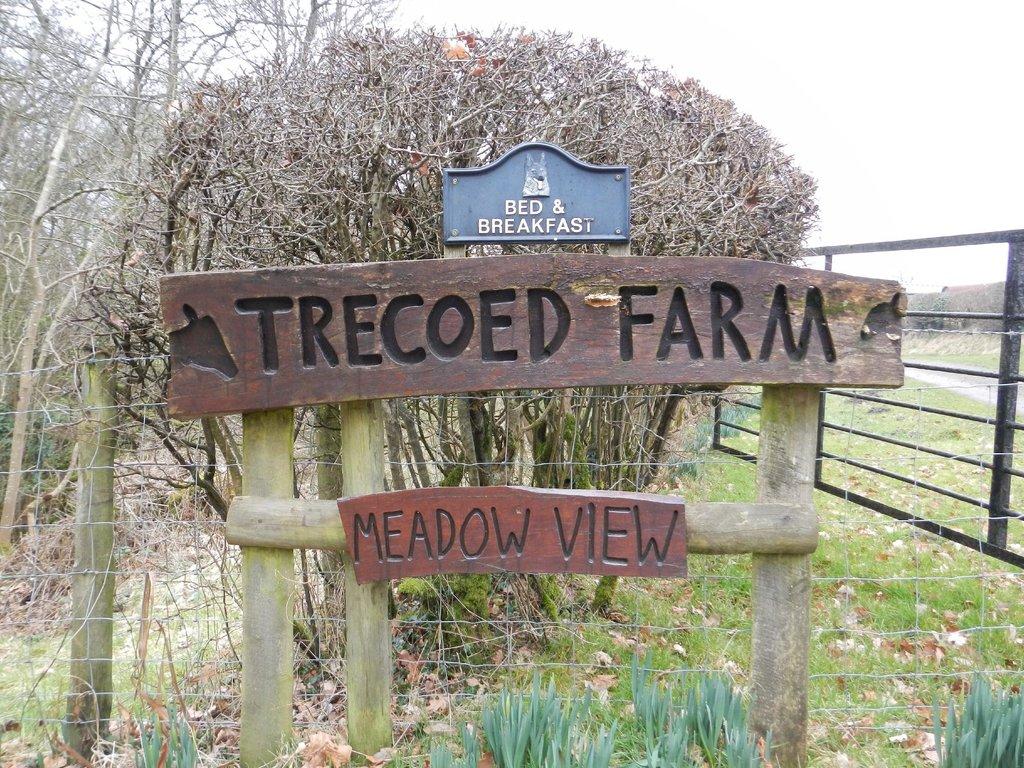 Trecoed Farm Bed & Breakfast