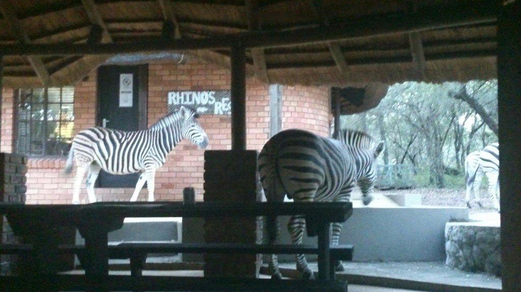 Crocodile River Lodge - Rhinos Rest