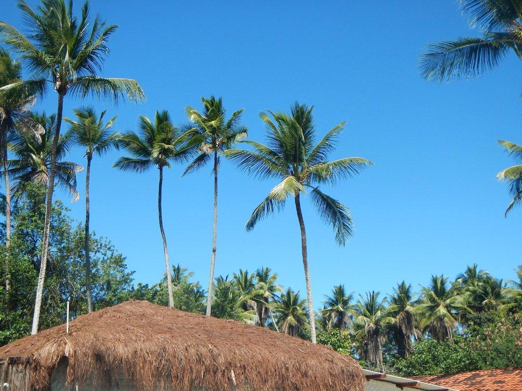Pousada Vila do Coco