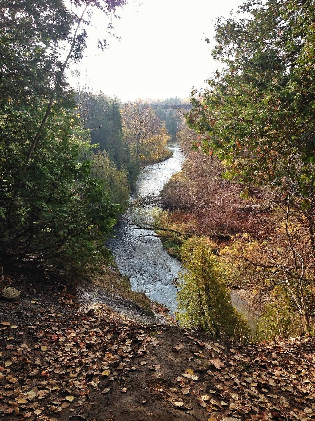 Things To Do in Greenwood Conservation Area, Restaurants in Greenwood Conservation Area