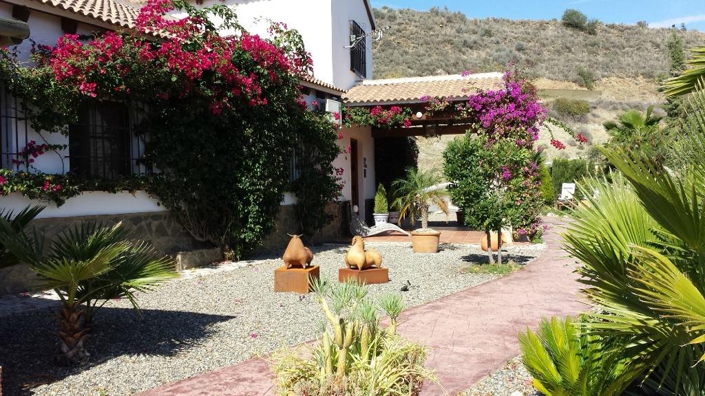 B&B Guesthouse Casa Don Carlos
