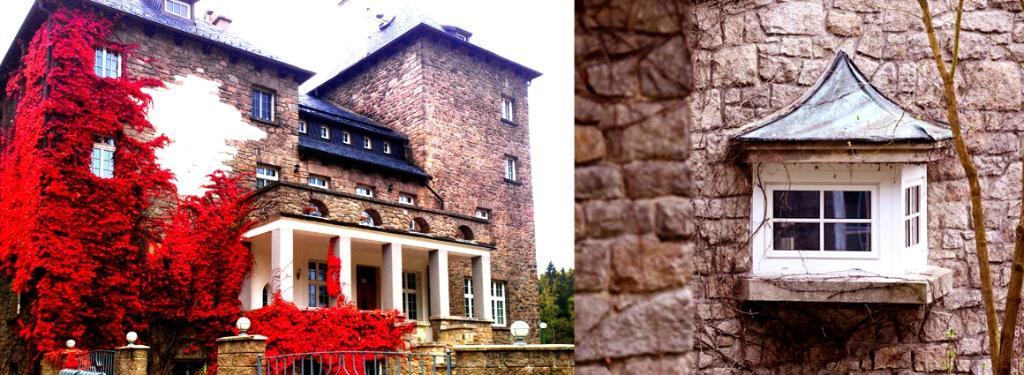 Vetrov Castle Hotel