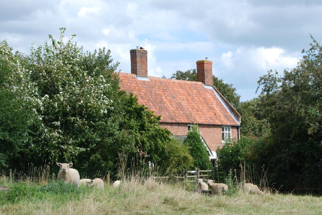 Hall Farm Bed and Breakfast