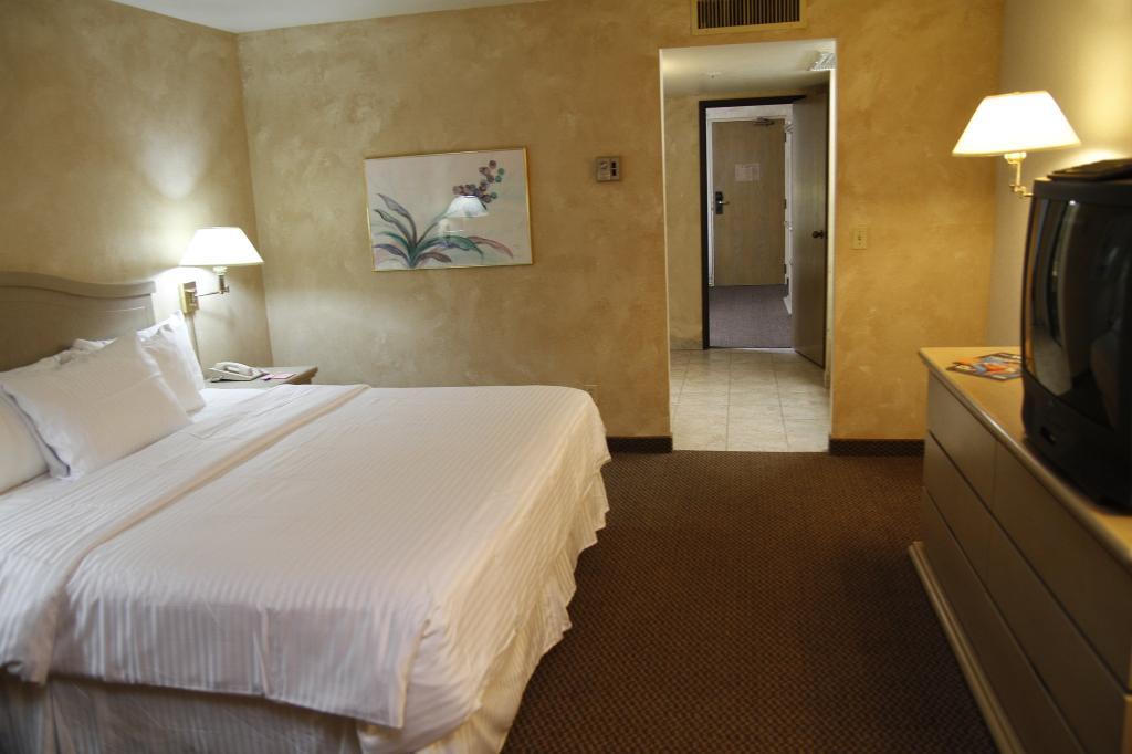 바이카운트 스위트 호텔