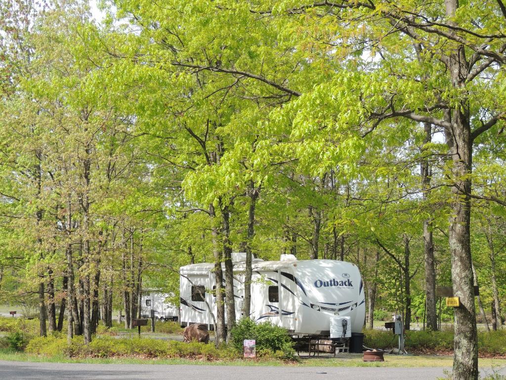 蒂莫西湖南 RV - 營地飯店