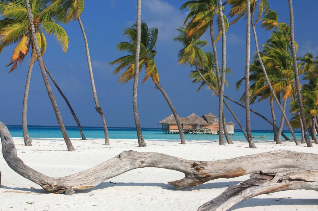 Gili Lankanfushi Maldiverna