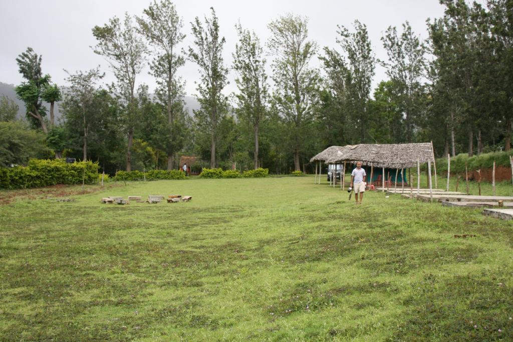 Wild Valley Farm