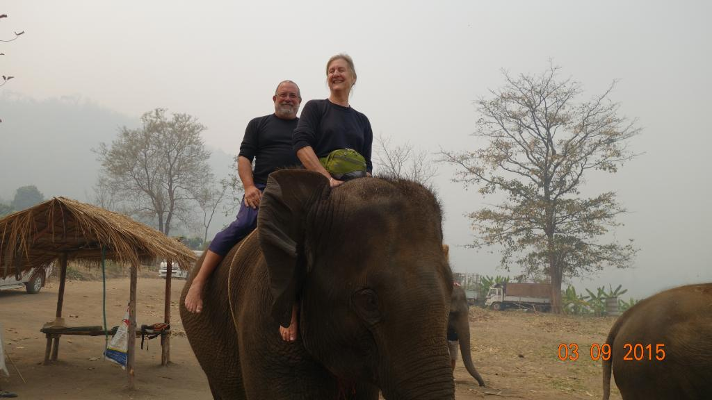 Woody's Elephant Guesthouse