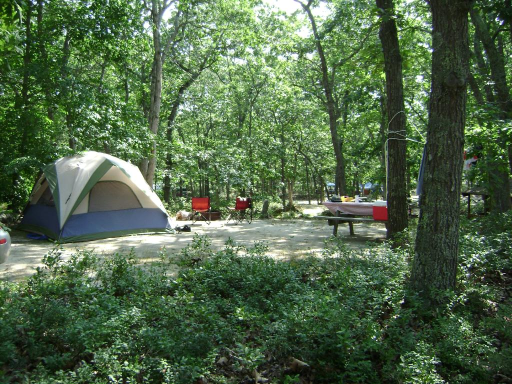 Martha's Vineyard Family Campground