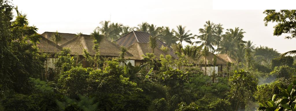 Luwak Ubud Villas