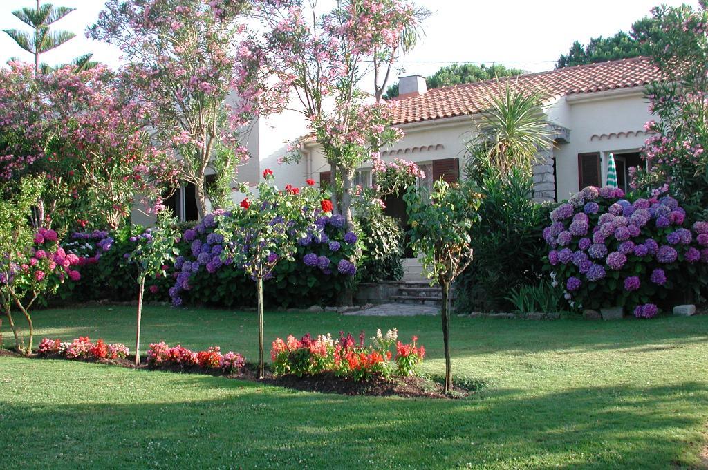 Casa Oleanda